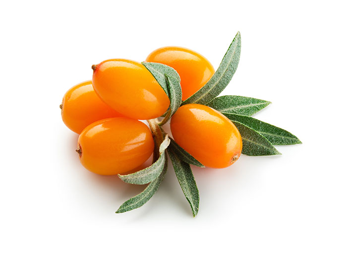 Sea buckthorn seed oil